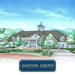 Ashtongrove_Gallery-2